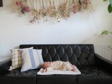 育児書には載っていない出産準備。こどもの写真整理は産前に整えるのがベスト。